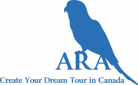 ARA Professional Travel & Support Inc.