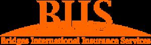Bridges International Insurance Services